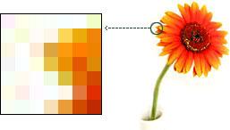 Понятие, форматы, применение, характеристики растровой и векторной графики